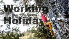 Climbing NZ   Working Holiday***