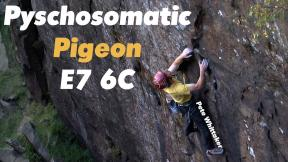 Pete Whittaker - Psychosomatic Pigeon E7 6C FA