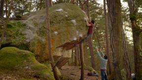 Sandscapes: Fontainebleau, Part One